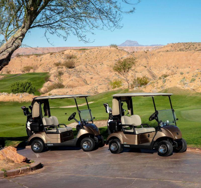 voiturettes de golf yamaha drive 2 or